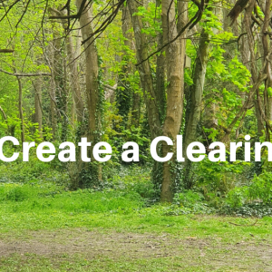 Creating a Clearing for Life to Happen