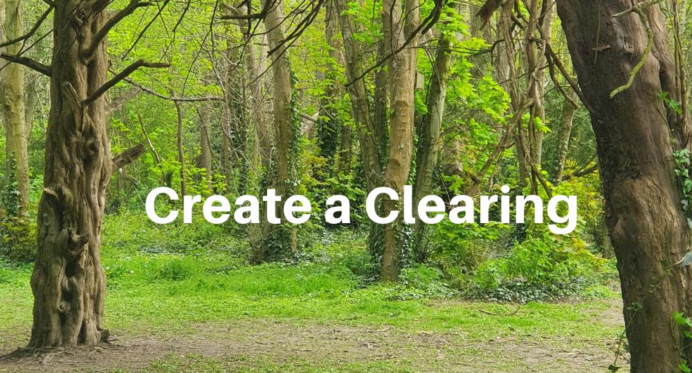 Create a Clearing Blog